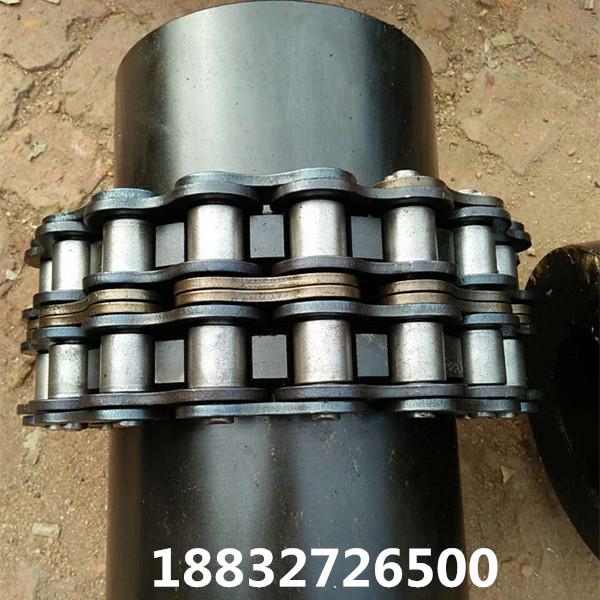 GL12/GL13/GL14双排链条联轴器大扭矩滚子链联轴器