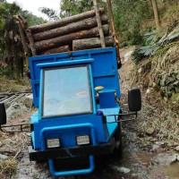 农用四不像 毛竹运输车 木材 四驱爬山王 果园可定制厂家价格