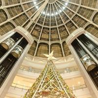 山东鼎亚电梯生产销售观光电梯