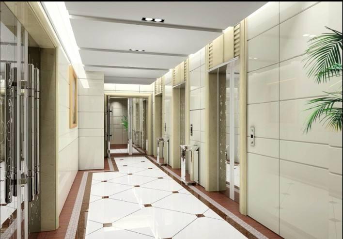 山东鼎亚电梯科技有限公司供应电梯