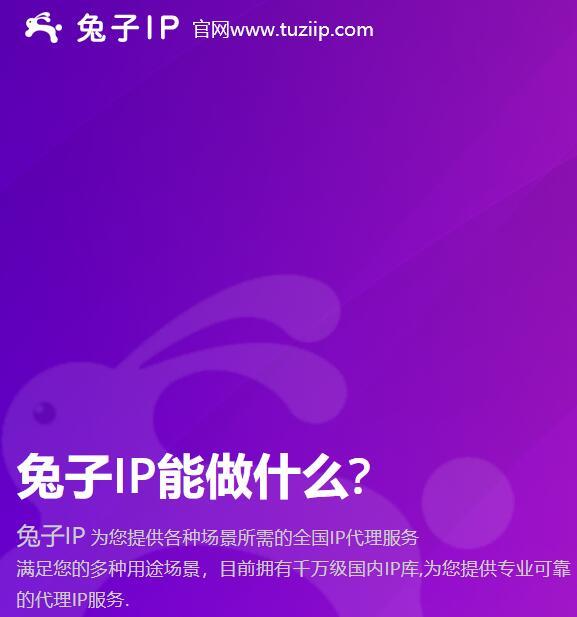高质量代理IP首选兔子动态IP满足对IP的一切业务需求