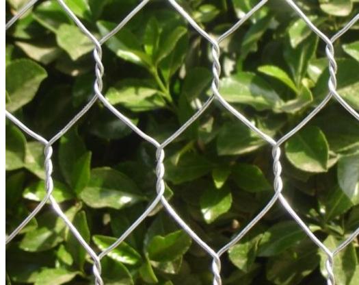 厂家直供镀锌包塑石笼网
