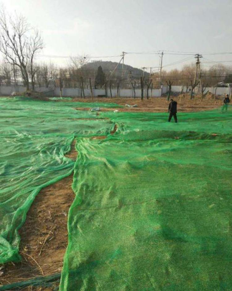 绿色盖土网A西梁绿色盖土网A绿色盖土网厂家价格