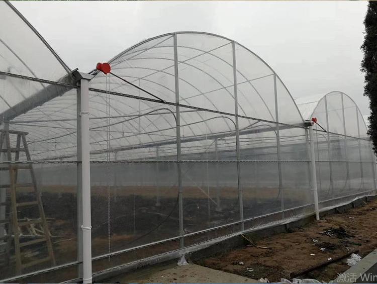 温室大棚 蔬菜大棚 连体大棚  连栋温室 薄膜大棚