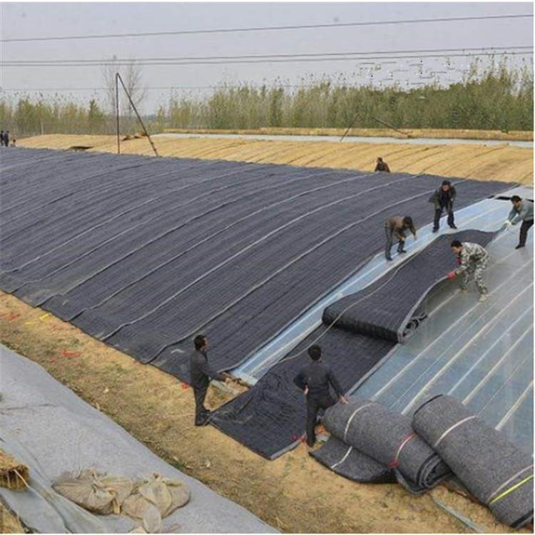 农业养殖大棚 薄膜大棚 水产养殖大棚 智能温室大棚