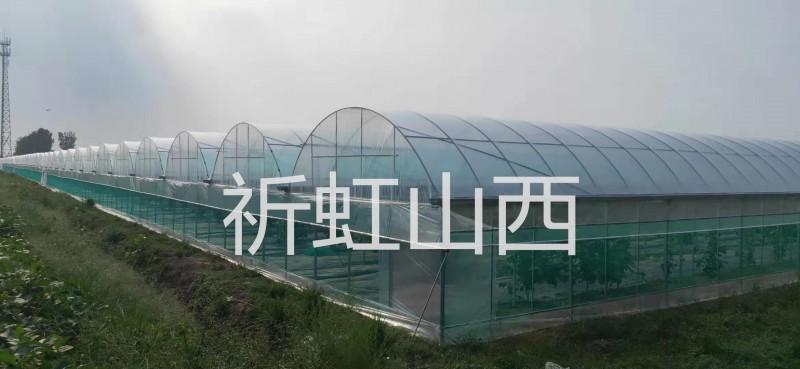 忻州神池县农业大棚 八角镇蔬菜种植棚