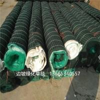 宁夏边坡绿化草毯 抗冲生态毯 抗冲生物毯 铁道河道治理