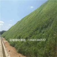生态椰丝毯 加筋防冲毯 抗冲生态毯 绿化植生毯 边坡绿化