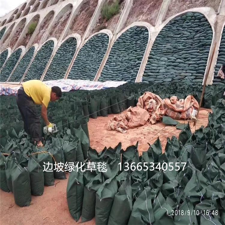 绿化生态袋 草籽生态袋 边坡绿化植生袋 厂家批发