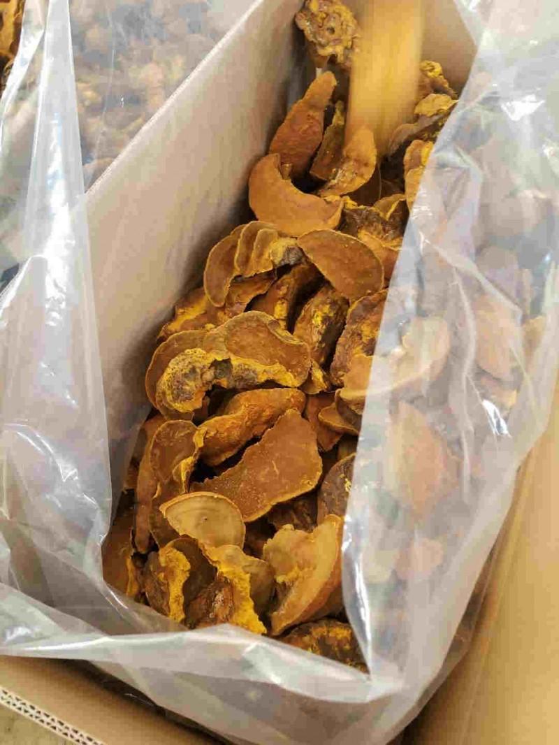 姜堰食用菌种植丰禾堂
