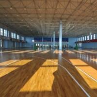 枫木纹运动地板 排球场运动地板品牌厂家