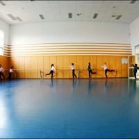舞蹈教室弹性地胶 芭蕾舞拉丁舞平纹舞蹈地板